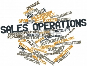 sales terms and roles